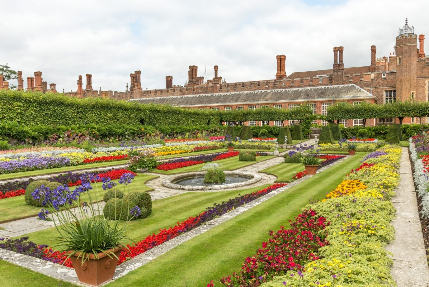 Roses In Garden: Day Trip To Hampton Court Flower Show